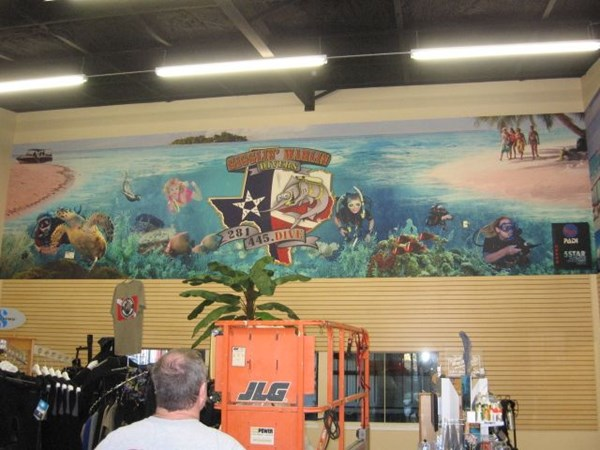 Wall Graphics, Murals, Wallpaper for Dive Shop in Houston , Texas
